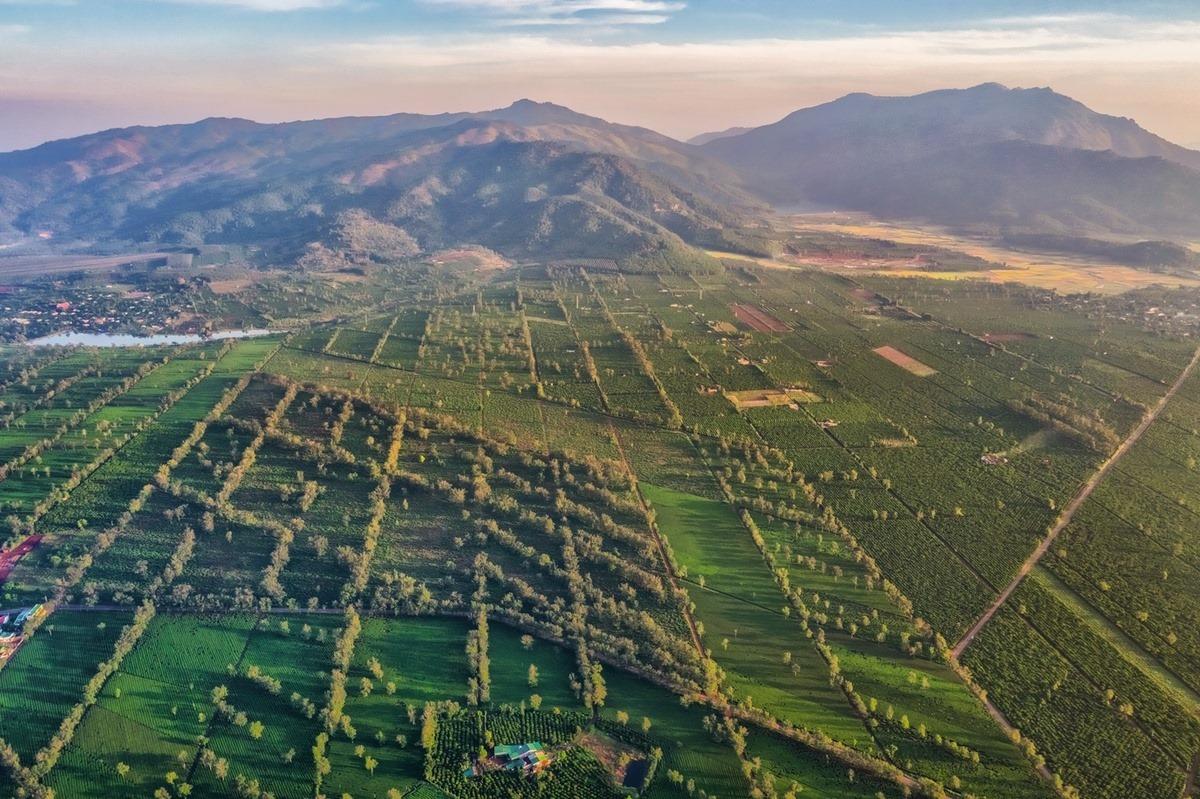 Những điểm check-in gần gũi thiên nhiên tại Pleiku