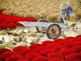 Ngỡ ngàng trước vẻ đẹp đầy màu sắc của làng hương 700 tuổi ở Huế