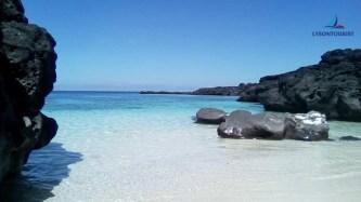 Du lịch khám phá thiên đường giữa biển khơi – Đảo Lý Sơn
