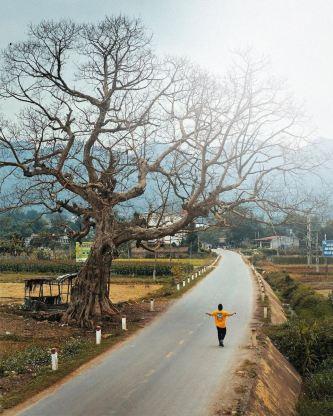 Từ Mai Châu đến Mộc Châu bao nhiêu km? Kinh nghiệm du lịch Mai Châu Mộc Châu?