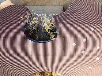 Trường mầm non vùng cao Tây Bắc xây bằng tôn vẫn gây sốt tạp chí kiến trúc quốc tế với hình dáng lạ mắt
