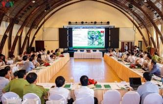 Bảo tồn đa dạng sinh học rừng Kon Plông gắn với phát triển sinh kế bền vững