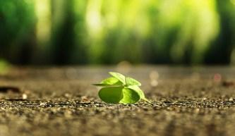 06 truyện hạt giống tâm hồn giúp bạn phát triển bản thân