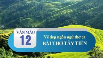 Vẻ đẹp ngôn ngữ thơ ca trong bài thơ Tây Tiến của Quang Dũng