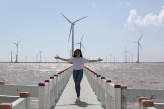 Top 3 cánh đồng quạt gió đẹp xuất sắc ở Việt Nam