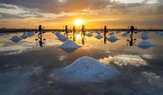 Tổng hợp những điểm du lịch ở Bạc Liêu nổi tiếng nhất