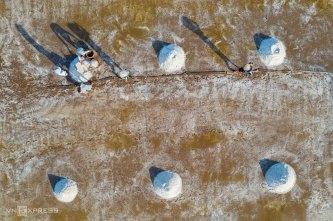 Cánh đồng muối ở Bạc Liêu đẹp như tranh vẽ