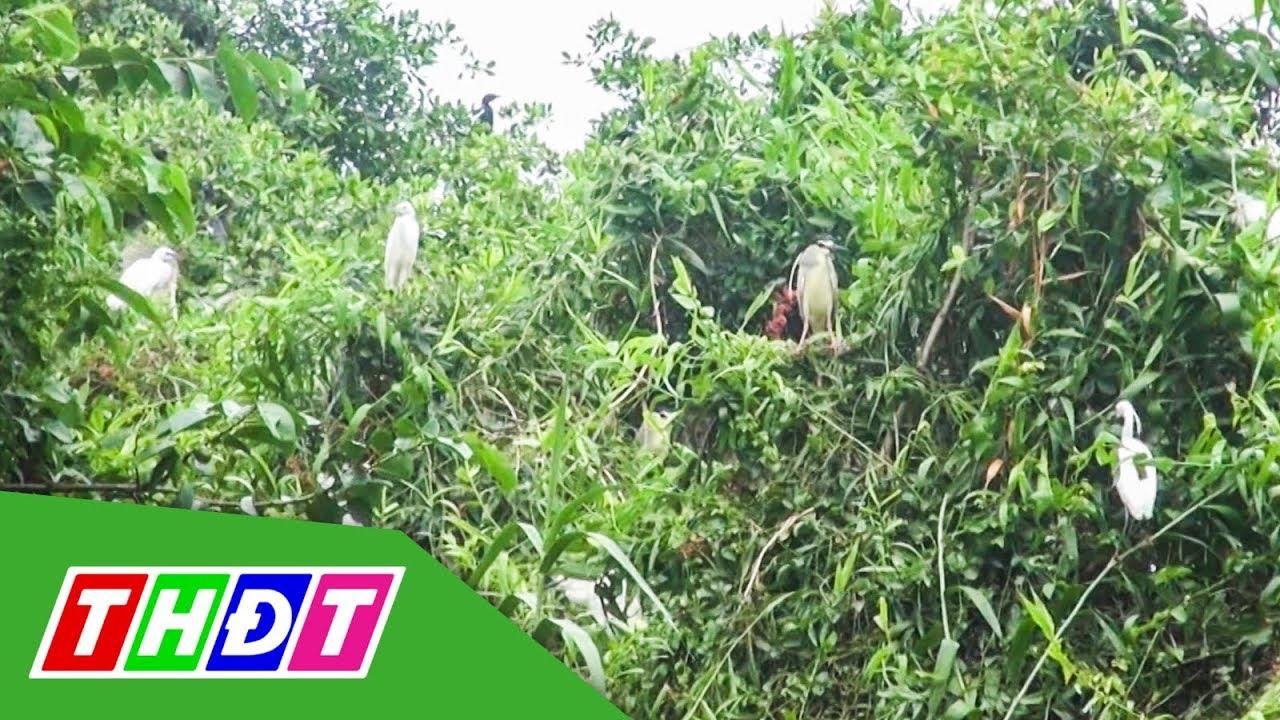 Độc đáo vườn chim giữa lòng thành phố