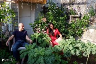 """Bà mẹ trẻ ở Hà Nội chia sẻ kinh nghiệm trồng """"vườn treo Babylon"""" ngay giữa lòng thành phố đã 10 năm vẫn xanh tốt"""