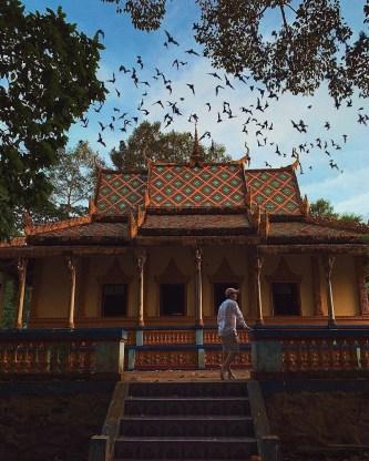 Khám phá chùa Dơi Sóc Trăng – ngôi chùa linh thiêng và huyền bí