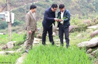 Huyện Mù Cang Chải: Thực hiện chương trình với quyết tâm chính trị và nỗ lực cao nhất
