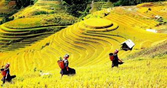 Phê duyệt Đề án phát triển sản phẩm du lịch đặc thù miền Tây Yên Bái