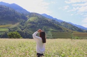 'Đi giữa mùa vàng' cùng hoa tam giác mạch với chuyến du lịch Mù Cang Chải của nữ travel blogger
